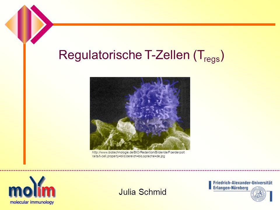 1 Regulatorische T-Zellen (T regs ) Julia Schmid http://www.biotechnologie.de/BIO/Redaktion/Bilder/de/Foerderport raits/t-cell,property=bild,bereich=bio,sprache=de.jpg
