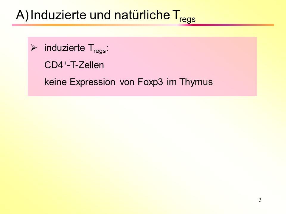 3 A)Induzierte und natürliche T regs induzierte T regs : CD4 + -T-Zellen keine Expression von Foxp3 im Thymus