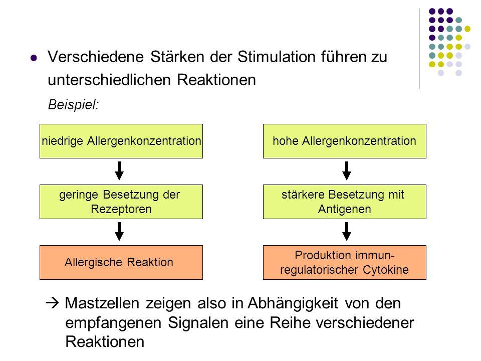 Verschiedene Stärken der Stimulation führen zu unterschiedlichen Reaktionen Beispiel: niedrige Allergenkonzentration Allergische Reaktion geringe Bese