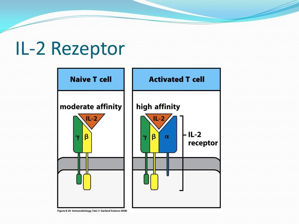 IL-2 Rezeptor