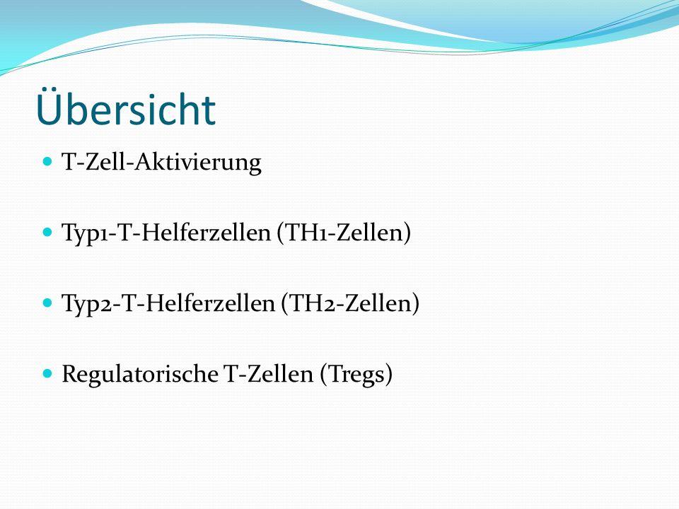 Übersicht T-Zell-Aktivierung Typ1-T-Helferzellen (TH1-Zellen) Typ2-T-Helferzellen (TH2-Zellen) Regulatorische T-Zellen (Tregs)