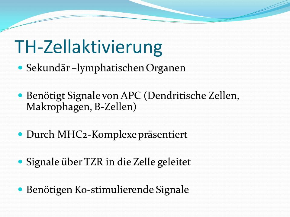 TH-Zellaktivierung Sekundär –lymphatischen Organen Benötigt Signale von APC (Dendritische Zellen, Makrophagen, B-Zellen) Durch MHC2-Komplexe präsentie