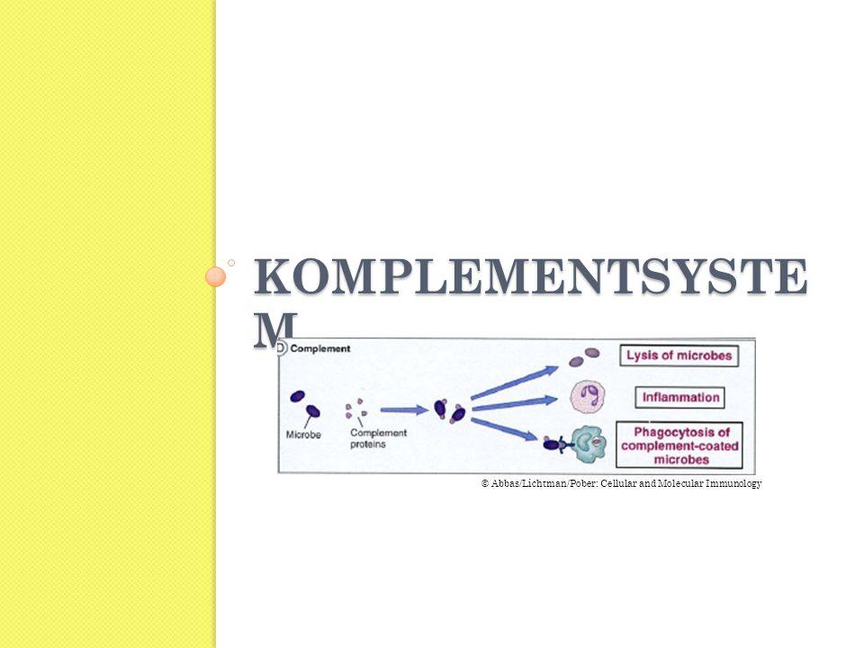 KOMPLEMENTSYSTE M © Abbas/Lichtman/Pober: Cellular and Molecular Immunology