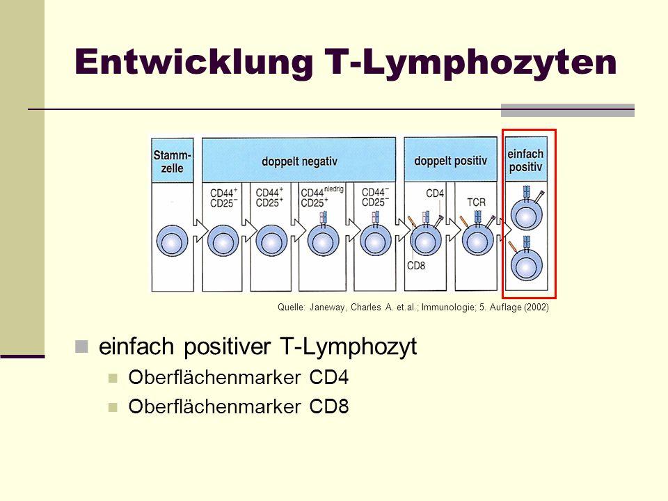 Entwicklung T-Lymphozyten einfach positiver T-Lymphozyt Oberflächenmarker CD4 Oberflächenmarker CD8 Quelle: Janeway, Charles A. et.al.; Immunologie; 5