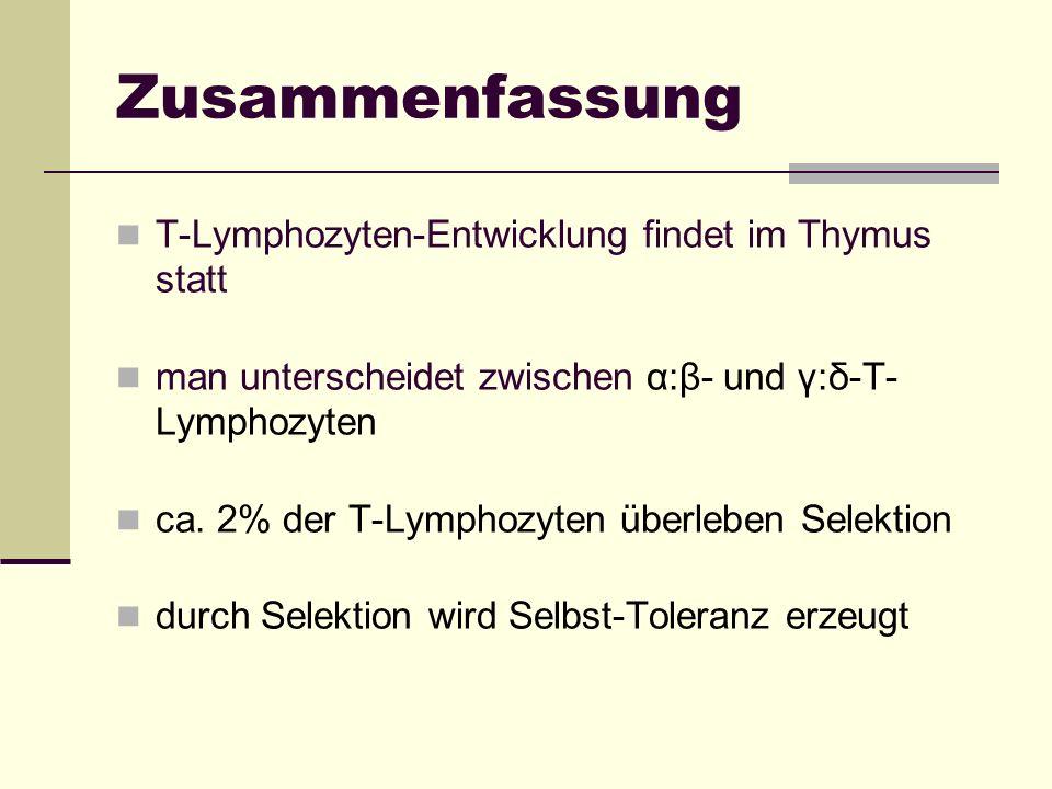 Zusammenfassung T-Lymphozyten-Entwicklung findet im Thymus statt man unterscheidet zwischen α:β- und γ:δ-T- Lymphozyten ca. 2% der T-Lymphozyten überl
