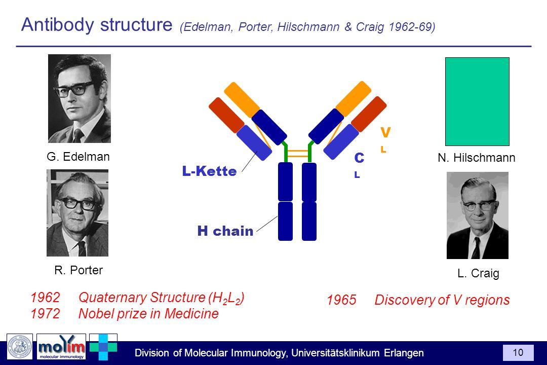 Division of Molecular Immunology, Universitätsklinikum Erlangen 10 Antibody structure (Edelman, Porter, Hilschmann & Craig 1962-69) 1962Quaternary Str