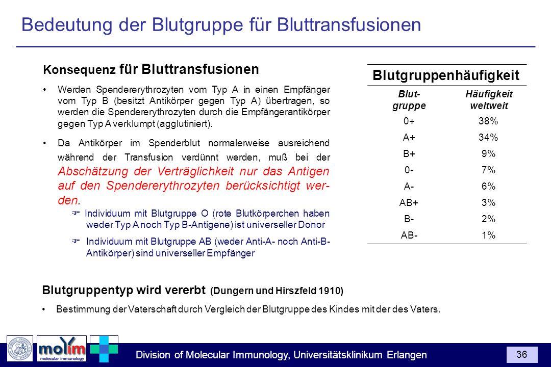 Division of Molecular Immunology, Universitätsklinikum Erlangen 36 Konsequenz für Bluttransfusionen Werden Spendererythrozyten vom Typ A in einen Empf