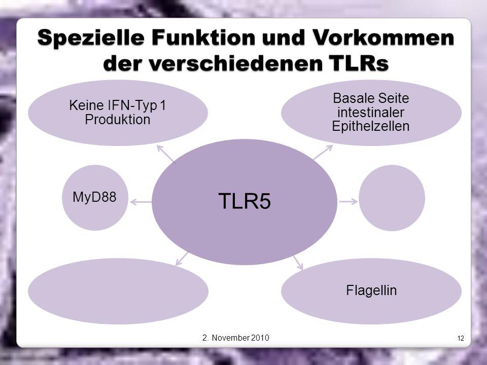 Spezielle Funktion und Vorkommen der verschiedenen TLRs TLR5 Basale Seite intestinaler Epithelzellen FlagellinMyD88 Keine IFN-Typ 1 Produktion 2. Nove