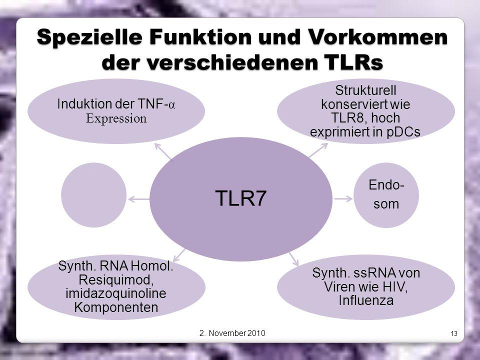 Spezielle Funktion und Vorkommen der verschiedenen TLRs TLR7 Strukturell konserviert wie TLR8, hoch exprimiert in pDCs Endo- som Synth. ssRNA von Vire