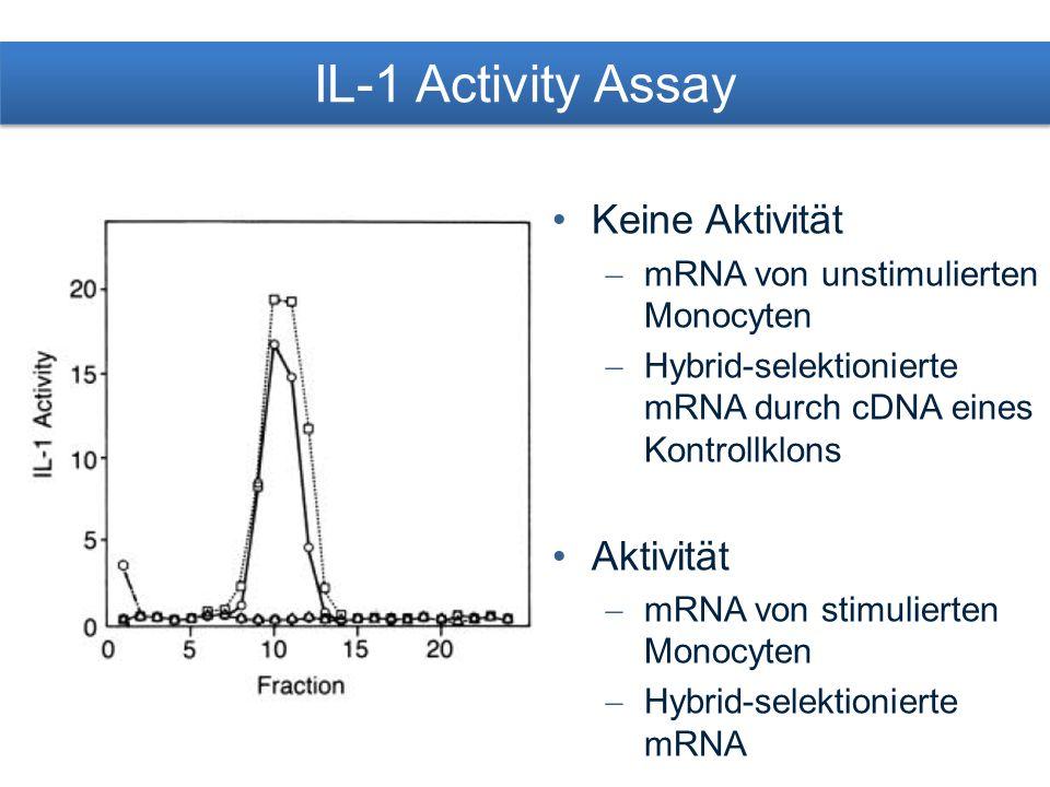 Sequenz der IL-1 Vorläufer cDNA Codiert für Protein mit 269 AS, 30.747 M r Vorläufer-Protein Start-Codon mit konservierter Sequenz (C-C-R-C-C-A-T-G-G) N-Terminus ohne für Sekretionsproteine typisches hydrophobe Signal