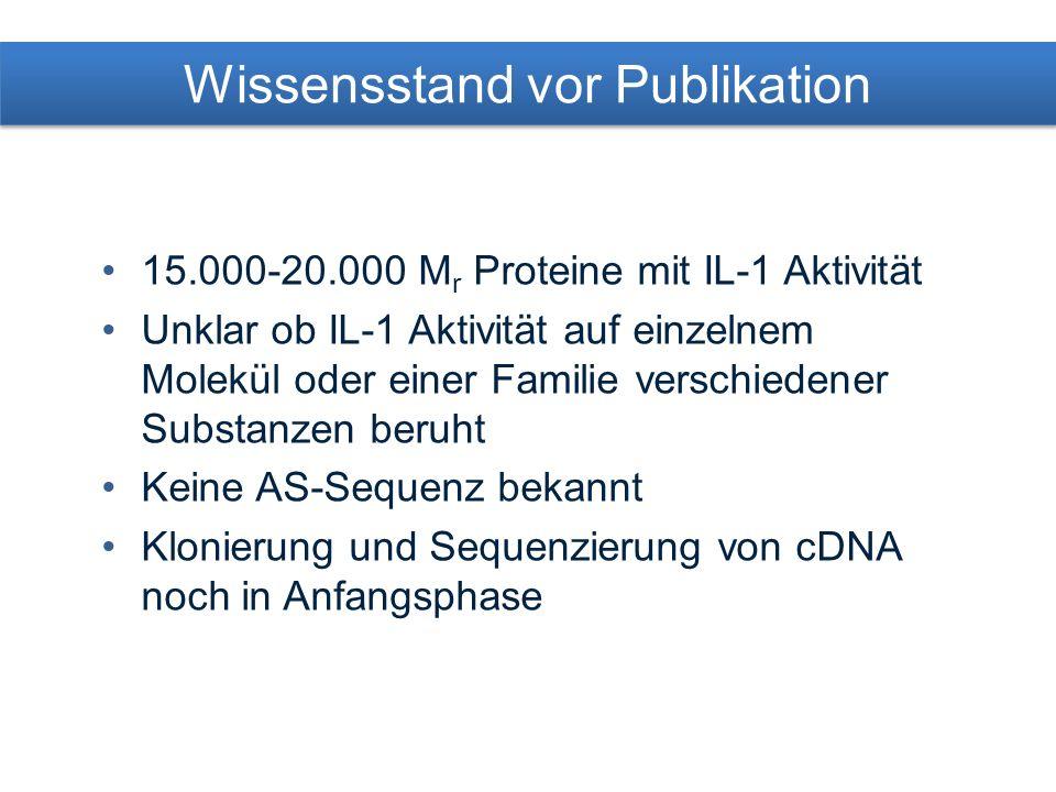 15.000-20.000 M r Proteine mit IL-1 Aktivität Unklar ob IL-1 Aktivität auf einzelnem Molekül oder einer Familie verschiedener Substanzen beruht Keine AS-Sequenz bekannt Klonierung und Sequenzierung von cDNA noch in Anfangsphase