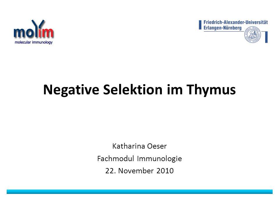 Negative Selektion im Thymus Katharina Oeser Fachmodul Immunologie 22. November 2010