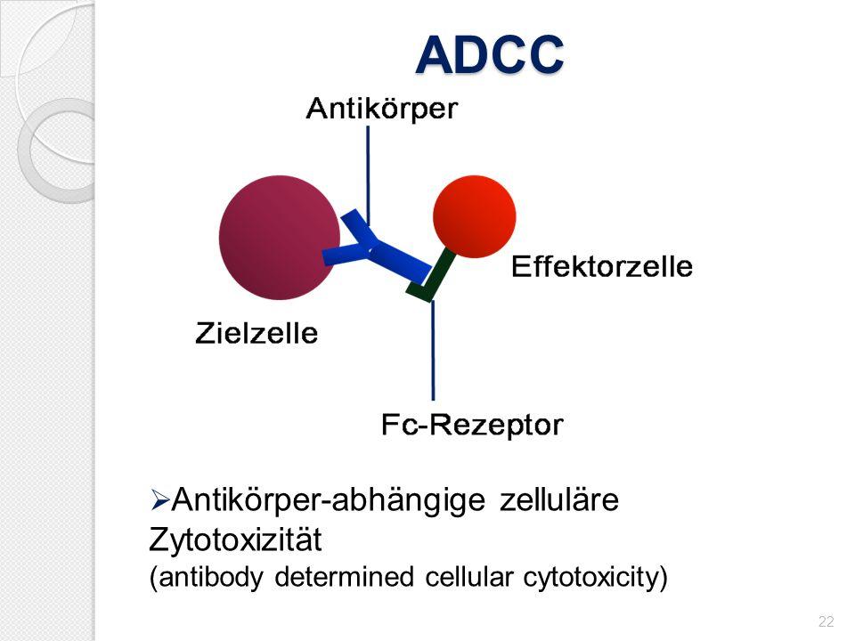 ADCC 22 Antikörper-abhängige zelluläre Zytotoxizität (antibody determined cellular cytotoxicity)