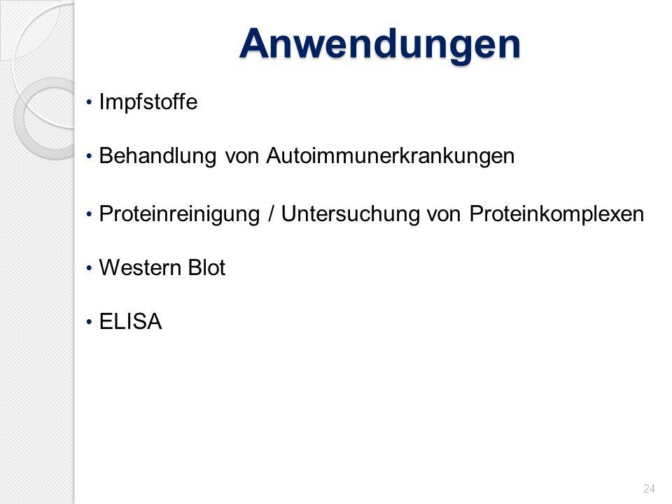 Anwendungen 24 Impfstoffe Behandlung von Autoimmunerkrankungen Proteinreinigung / Untersuchung von Proteinkomplexen Western Blot ELISA