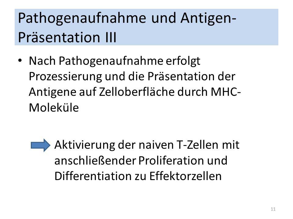 Pathogenaufnahme und Antigen- Präsentation III Nach Pathogenaufnahme erfolgt Prozessierung und die Präsentation der Antigene auf Zelloberfläche durch