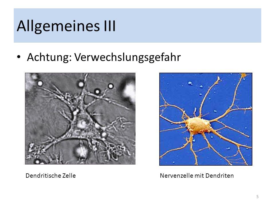 Allgemeines IV Zwei Arten von Dendritischen Zellen: Konventionelle (cDC) und Plasmazytoide (pDC) Antigen-Präsentation und Aktivierung von naiven T-Lymphozyten (T-Zellen) Generierung von Interferon der Klasse I, besonders bei Virusinfektionen 6