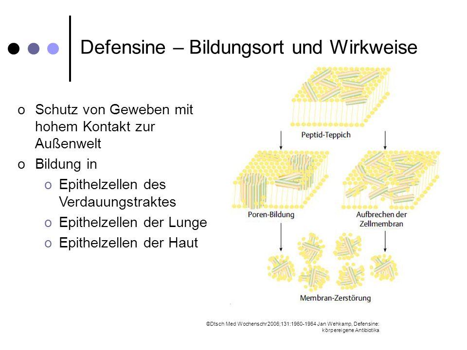Defensine – Bildungsort und Wirkweise oSchutz von Geweben mit hohem Kontakt zur Außenwelt oBildung in oEpithelzellen des Verdauungstraktes oEpithelzel