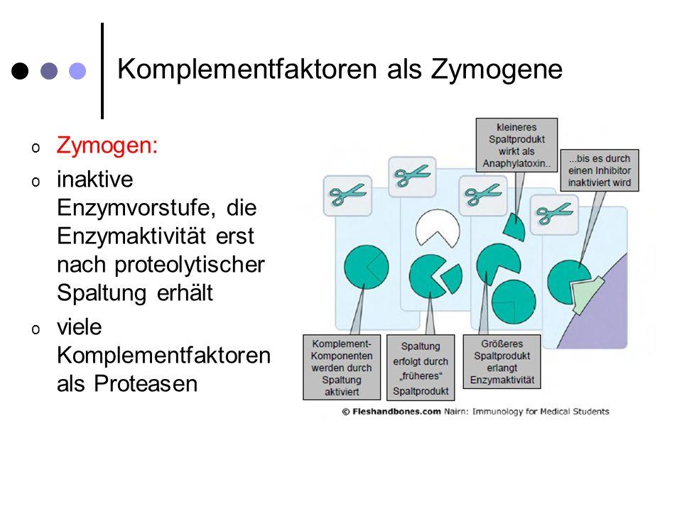 Nomenklatur der Komplementfaktoren oNomenklatur oC=alle Komponenten des klassischen Komplementsystem und des membranangreifenden Komplexes oKomponenten durchnummeriert: oC1, C4, C2, C3, C5, C6, C7, C8, C9 oProteolytische gespaltene Produkte werden mit Kleinbuchstaben betitelt: oa=kleineres Fragment (löslicher Mediator; Anaphylatoxin) ob=größeres Fragment (aktive Protease) C3a C3b