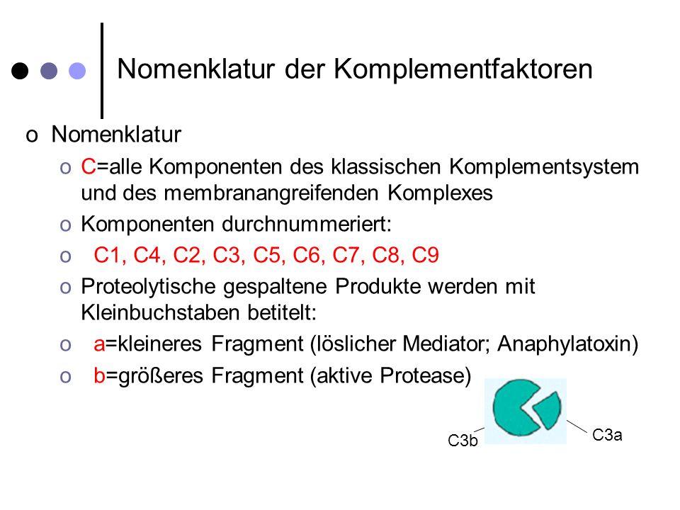 Nomenklatur der Komplementfaktoren oNomenklatur oC=alle Komponenten des klassischen Komplementsystem und des membranangreifenden Komplexes oKomponente