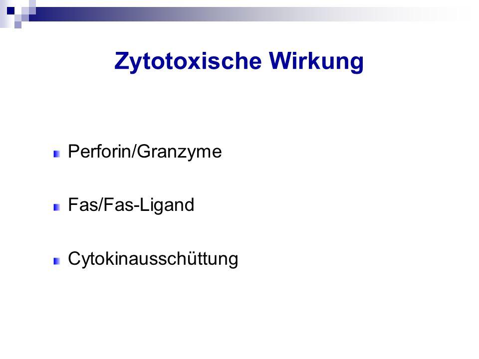 Zytotoxische Wirkung Perforin/Granzyme Fas/Fas-Ligand Cytokinausschüttung