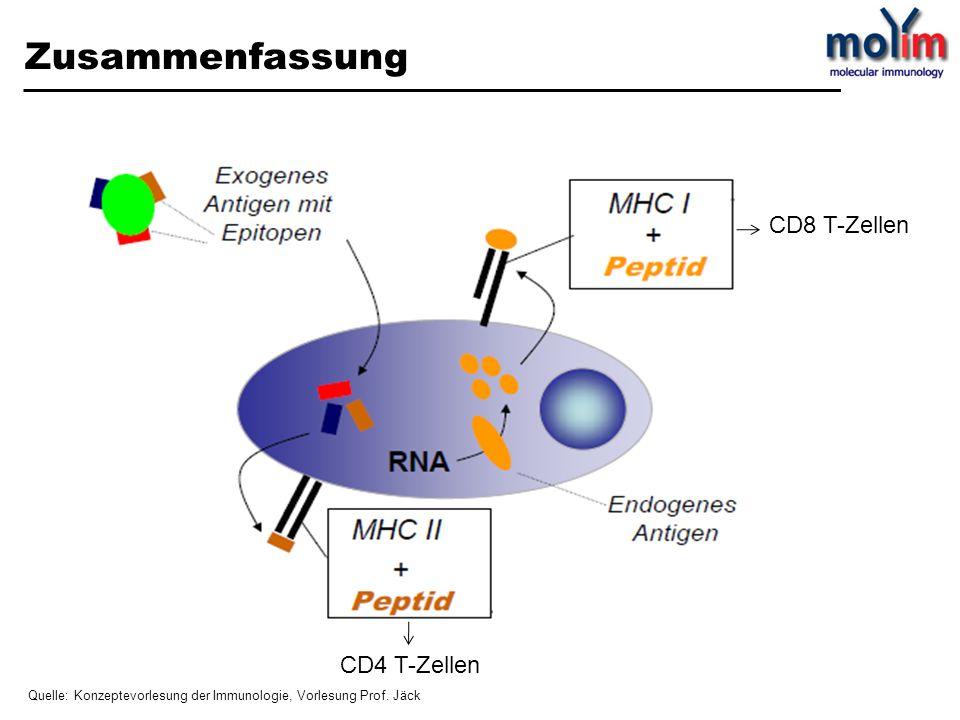 Zusammenfassung CD 8 T- Zell en CD4 T-Zellen CD8 T-Zellen Quelle: Konzeptevorlesung der Immunologie, Vorlesung Prof. Jäck