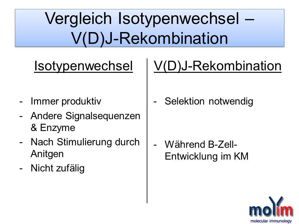 Vergleich Isotypenwechsel – V(D)J-Rekombination Isotypenwechsel -Immer produktiv -Andere Signalsequenzen & Enzyme -Nach Stimulierung durch Anitgen -Ni