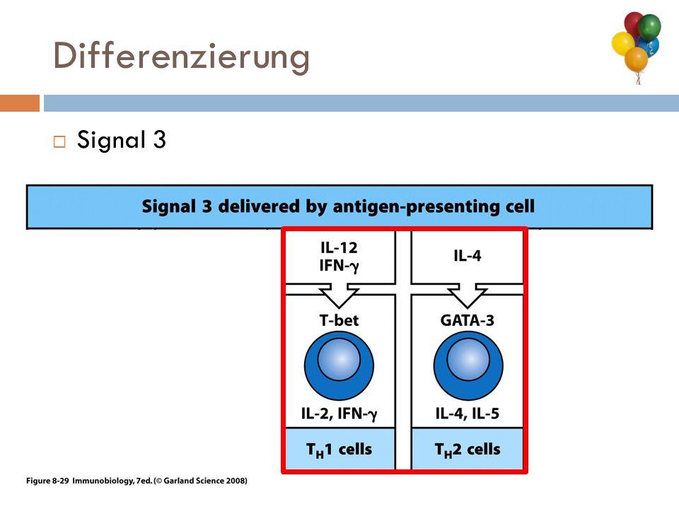 Differenzierung Signal 3