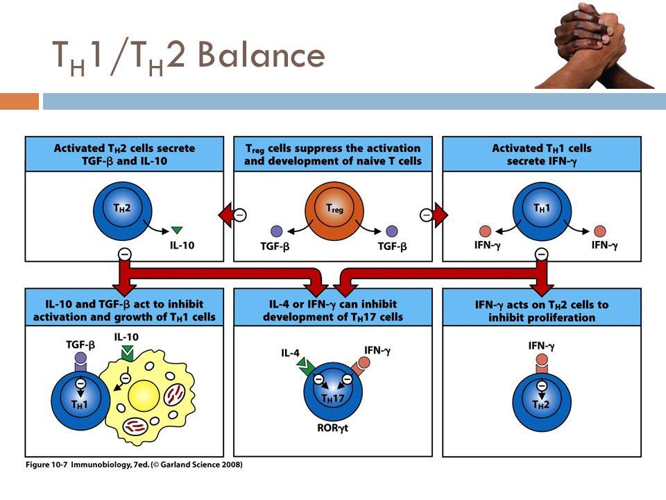T H 1/T H 2 Balance