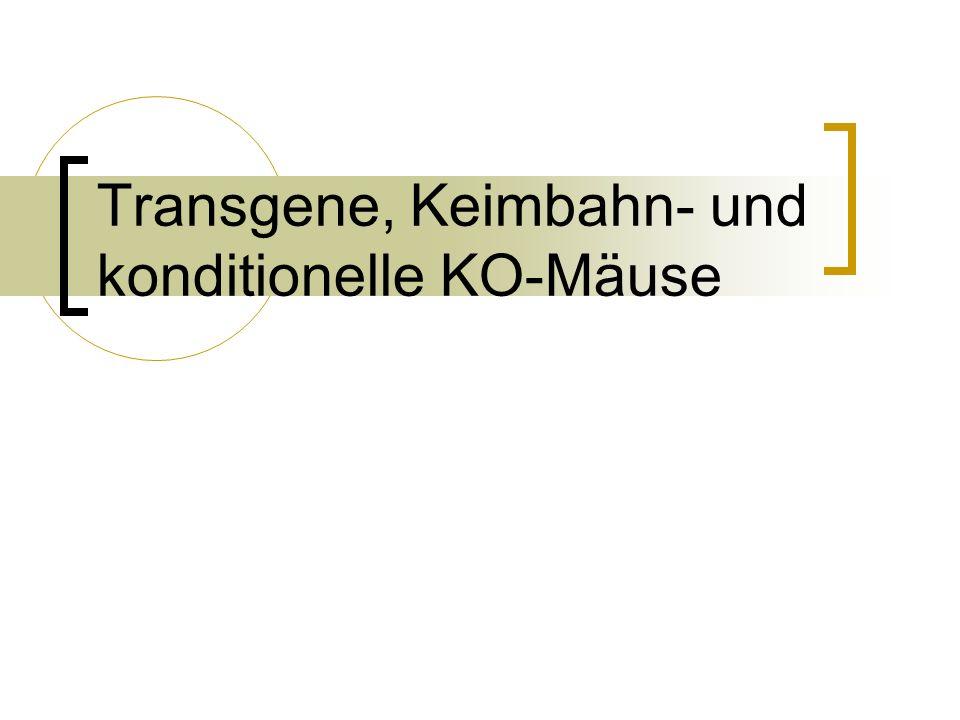 Transgene, Keimbahn- und konditionelle KO-Mäuse