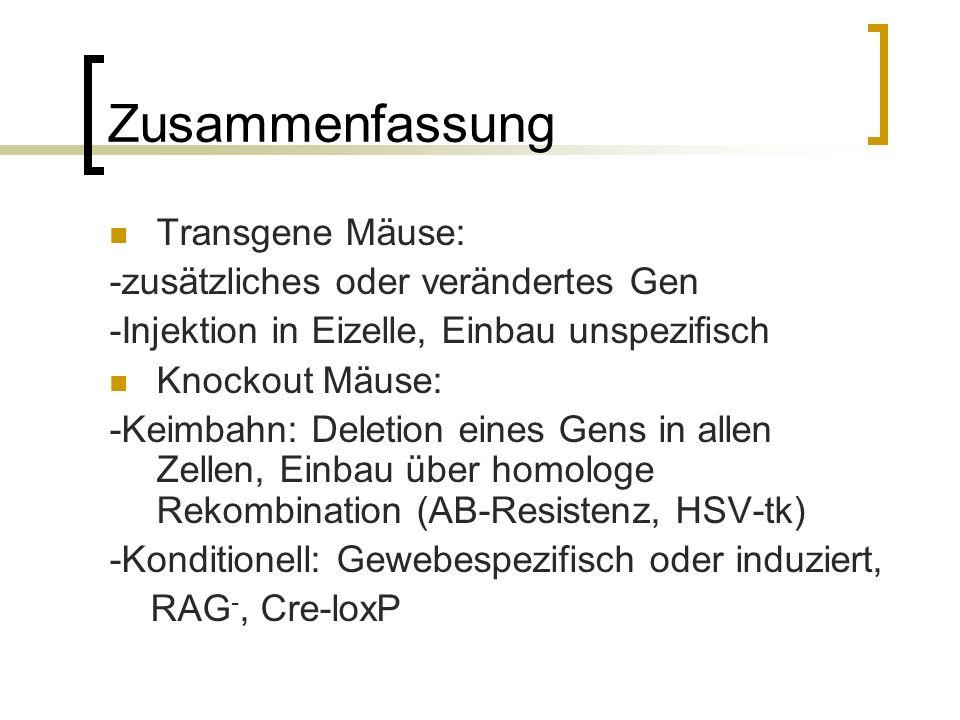Zusammenfassung Transgene Mäuse: -zusätzliches oder verändertes Gen -Injektion in Eizelle, Einbau unspezifisch Knockout Mäuse: -Keimbahn: Deletion ein