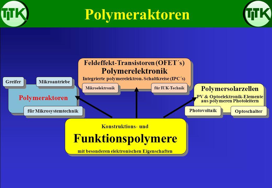 Polymeraktoren Konstruktions- und Funktionspolymere mit besonderen elektronischen Eigenschaften Feldeffekt-Transistoren (OFET´s) aus polymeren Leitern