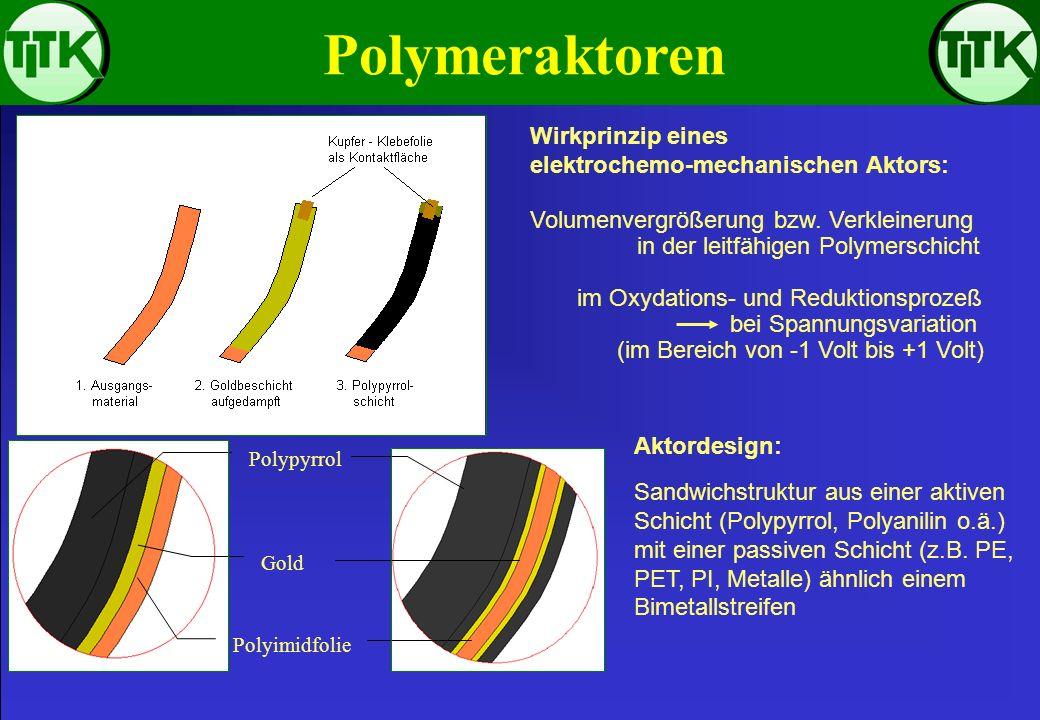Polymeraktoren Wirkprinzip eines elektrochemo-mechanischen Aktors: Volumenvergrößerung bzw. Verkleinerung in der leitfähigen Polymerschicht im Oxydati