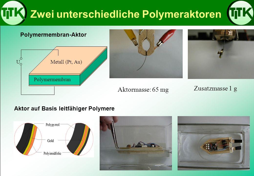 Zwei unterschiedliche Polymeraktoren Polymermembran Metall (Pt, Au)U Polymermembran-Aktor Aktor auf Basis leitfähiger Polymere Aktormasse: 65 mg Zusat