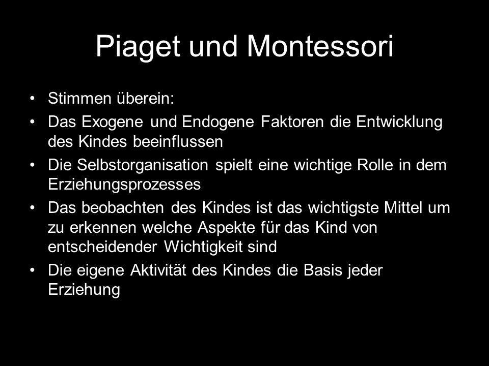 Piaget und Montessori Stimmen überein: Das Exogene und Endogene Faktoren die Entwicklung des Kindes beeinflussen Die Selbstorganisation spielt eine wi