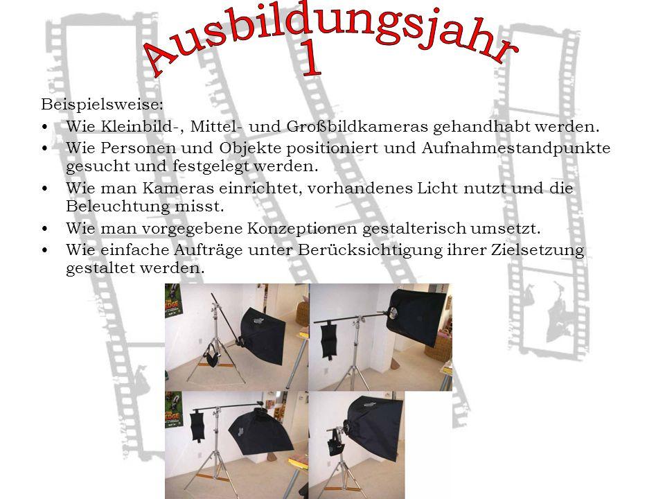 Beispielsweise: Wie Kleinbild-, Mittel- und Großbildkameras gehandhabt werden.