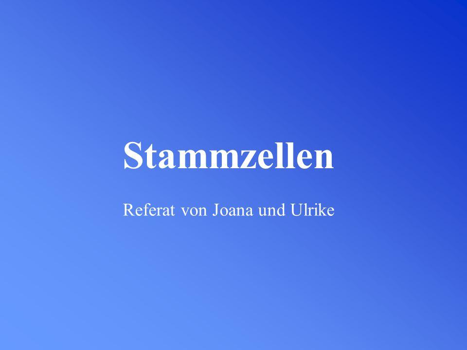 Stammzellen Referat von Joana und Ulrike