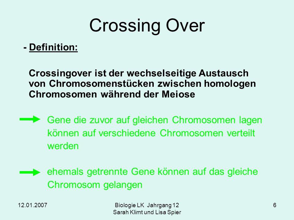 12.01.2007Biologie LK Jahrgang 12 Sarah Klimt und Lisa Spier 6 Crossing Over - Definition: Crossingover ist der wechselseitige Austausch von Chromosom