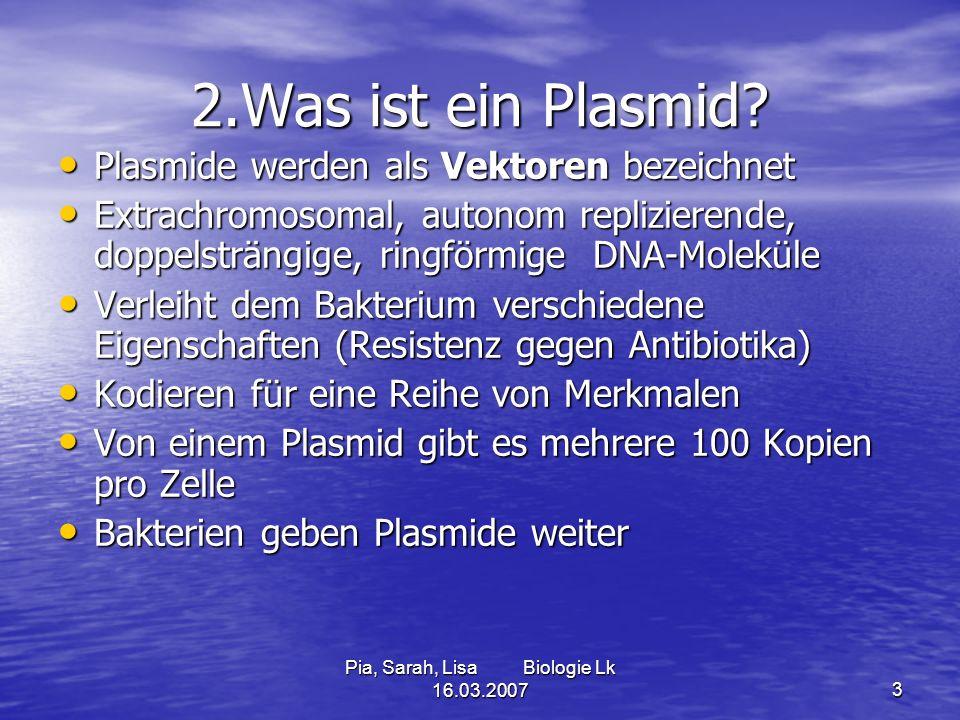Pia, Sarah, Lisa Biologie Lk 16.03.20073 2.Was ist ein Plasmid? Plasmide werden als Vektoren bezeichnet Plasmide werden als Vektoren bezeichnet Extrac