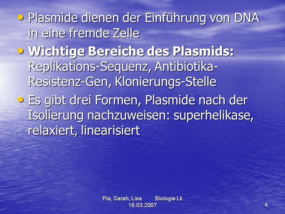 Pia, Sarah, Lisa Biologie Lk 16.03.20074 Plasmide dienen der Einführung von DNA in eine fremde Zelle Plasmide dienen der Einführung von DNA in eine fr