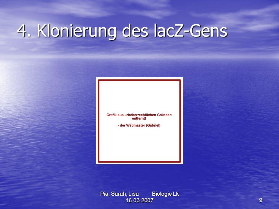 Pia, Sarah, Lisa Biologie Lk 16.03.20079 4. Klonierung des lacZ-Gens