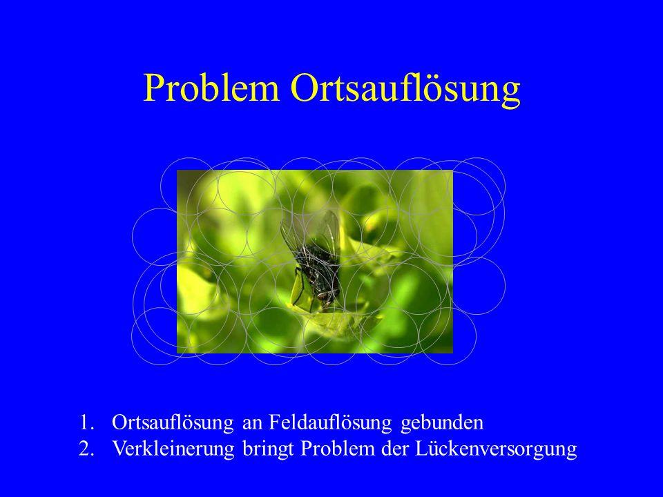 Problem Ortsauflösung 1.Ortsauflösung an Feldauflösung gebunden 2.Verkleinerung bringt Problem der Lückenversorgung