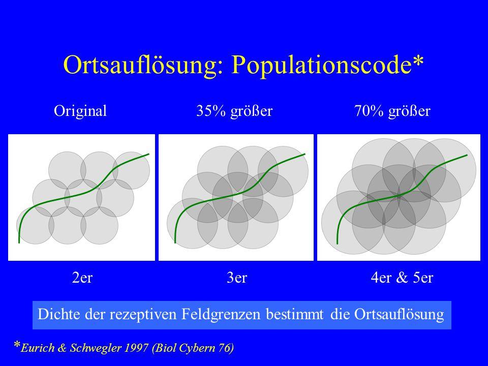 Ortsauflösung: Populationscode* * Eurich & Schwegler 1997 (Biol Cybern 76) Dichte der rezeptiven Feldgrenzen bestimmt die Ortsauflösung 35% größer 3er