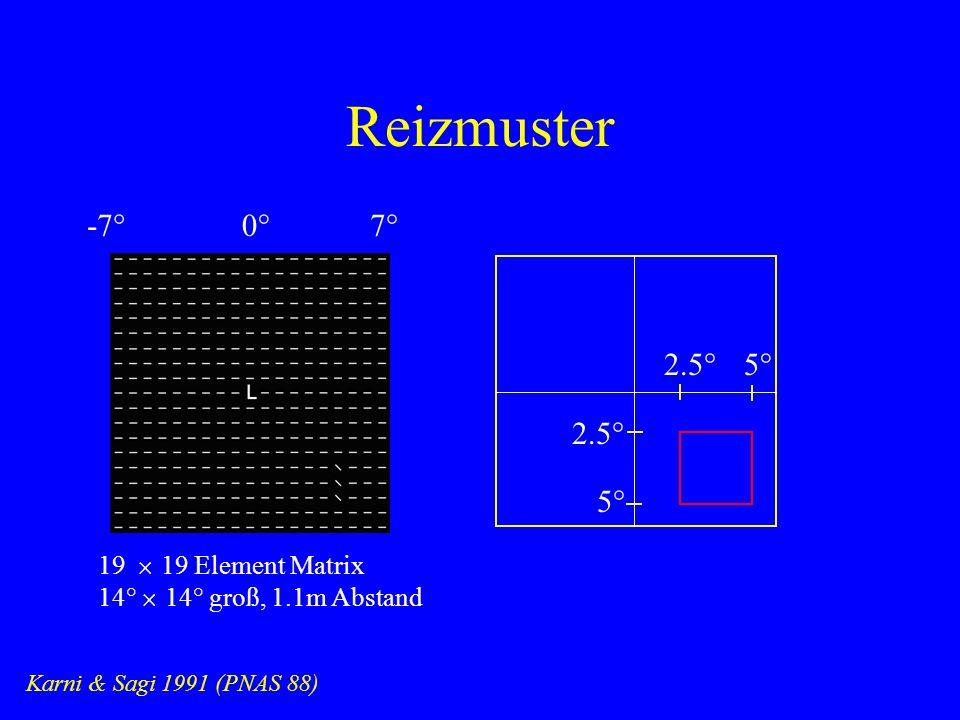 Reizmuster Karni & Sagi 1991 (PNAS 88) 0°7°-7° 2.5°5° 2.5° 19 19 Element Matrix 14° 14° groß, 1.1m Abstand