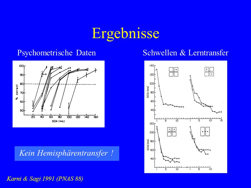 Ergebnisse Karni & Sagi 1991 (PNAS 88) Psychometrische DatenSchwellen & Lerntransfer Kein Hemisphärentransfer !