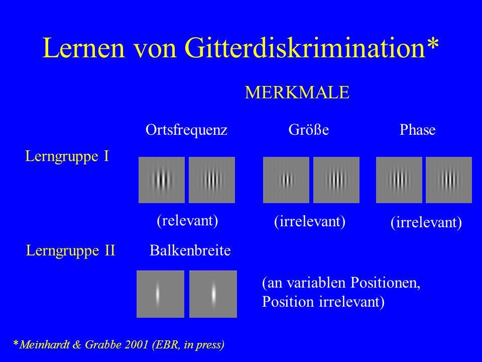 Lernen von Gitterdiskrimination* *Meinhardt & Grabbe 2001 (EBR, in press) Lerngruppe IIBalkenbreite (an variablen Positionen, Position irrelevant) MER