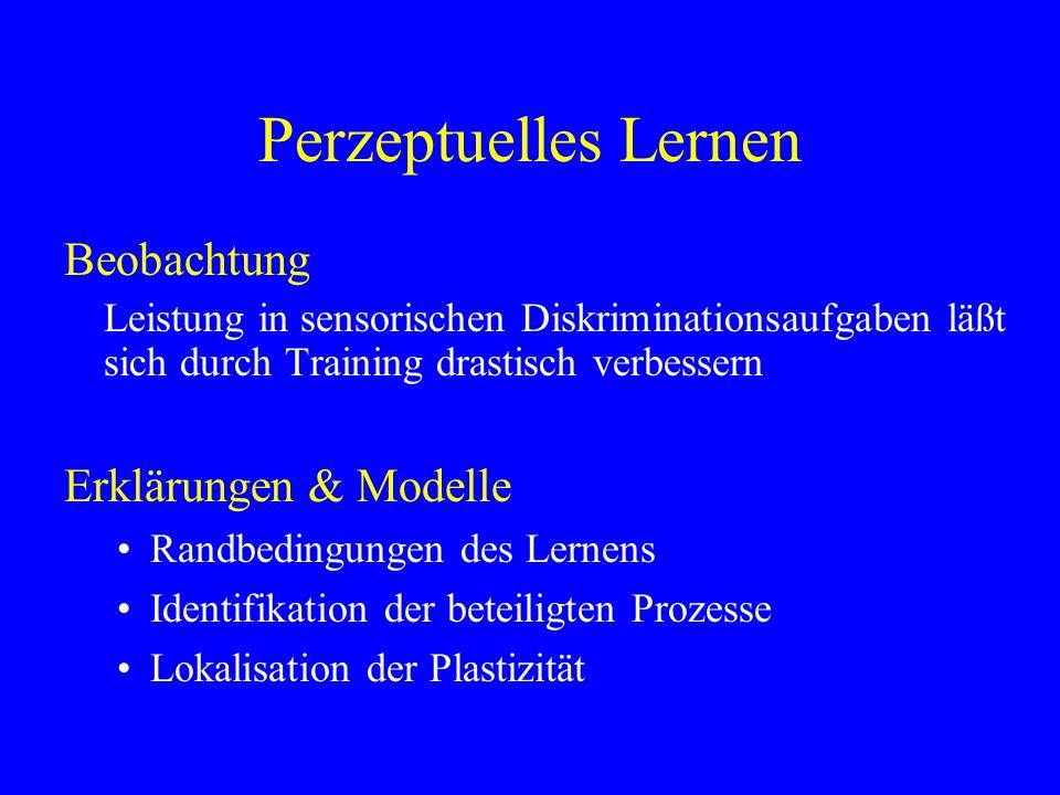 Perzeptuelles Lernen Beobachtung Leistung in sensorischen Diskriminationsaufgaben läßt sich durch Training drastisch verbessern Erklärungen & Modelle