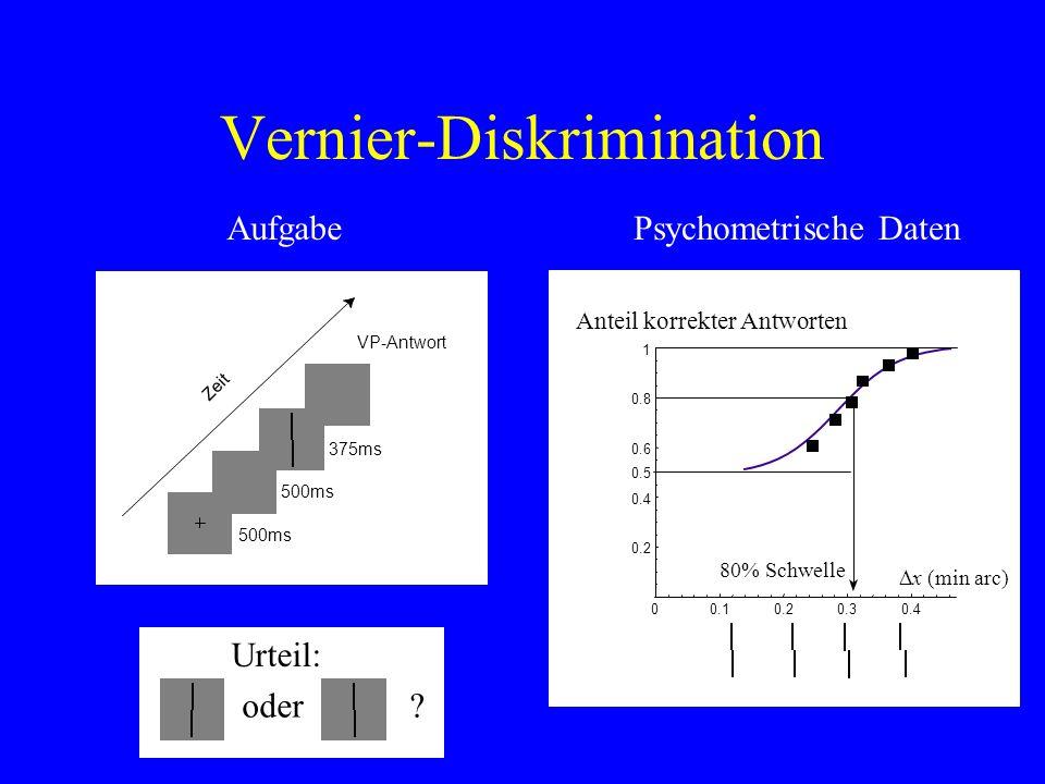 Vernier-Diskrimination 375ms VP-Antwort 500ms Zeit 500ms Urteil: oder? AufgabePsychometrische Daten 0.10.20.30.4 0.2 0.4 0.6 0.8 1 0 Anteil korrekter