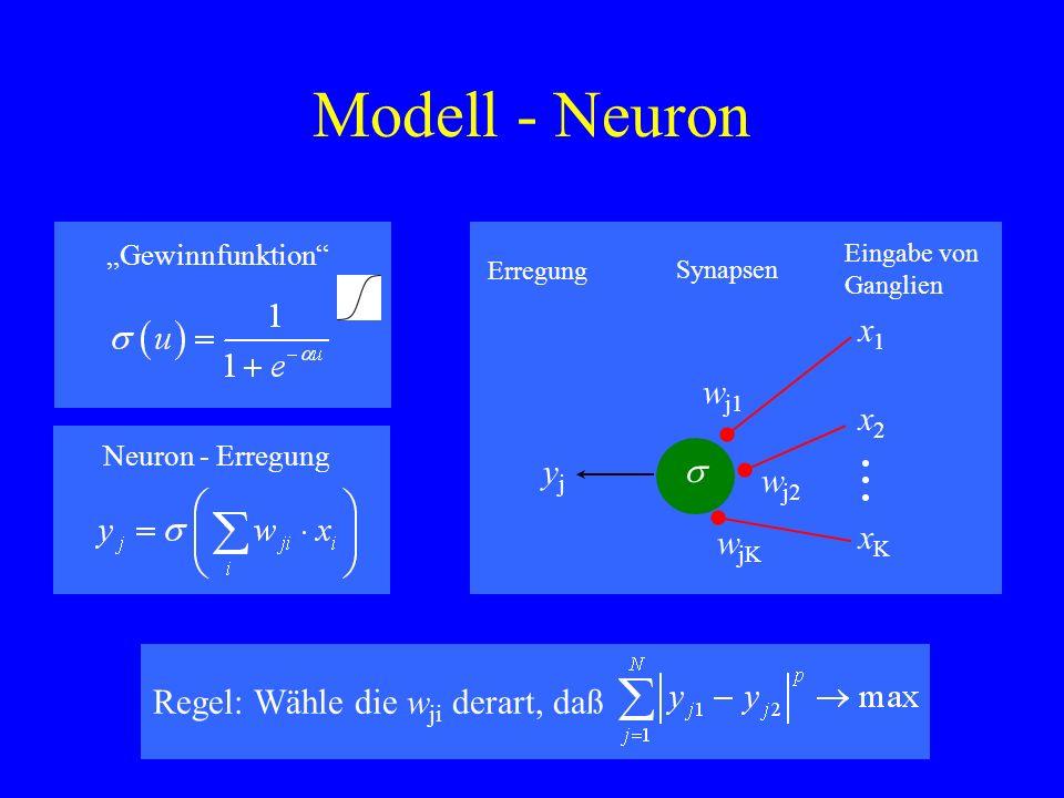 Modell - Neuron w j1 w jK w j2 x1x1 x2x2 xKxK yjyj Synapsen Eingabe von Ganglien Erregung Gewinnfunktion Neuron - Erregung Regel: Wähle die w ji derar