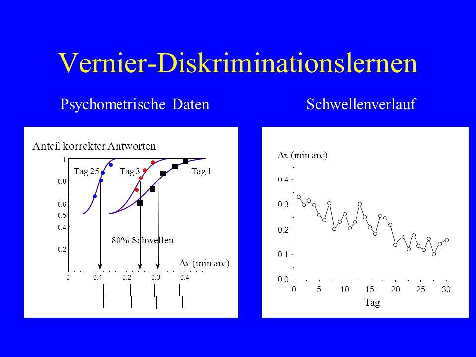 Vernier-Diskriminationslernen Psychometrische Daten 0.10.20.30.4 0.2 0.4 0.6 0.8 1 0 Anteil korrekter Antworten 80% Schwellen 0.5 x (min arc) Tag 1Tag