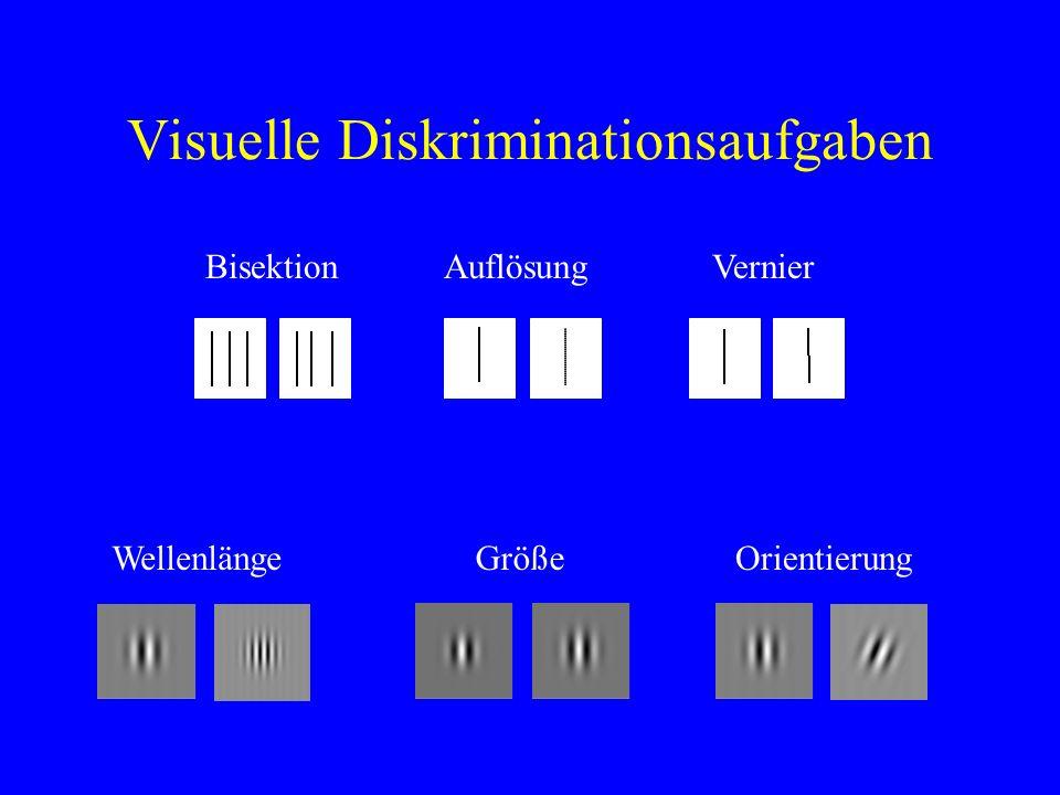 Visuelle Diskriminationsaufgaben BisektionAuflösungVernier WellenlängeGrößeOrientierung